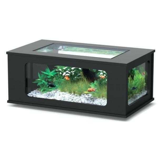 Table Meuble Aquarium Et De Forum Basse Maison yfv6bgY7