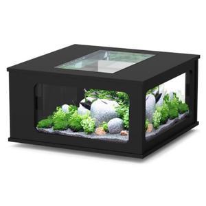 Table basse aquarium ovale
