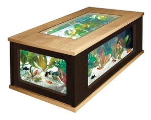 Table basse aquarium fait maison