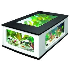 Table basse aquarium tortue