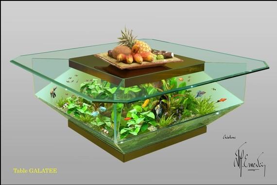 Table basse aquarium condensation