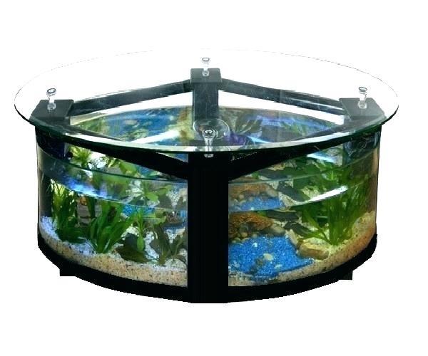 Table Basse Aquarium Solde Maison Et Meuble De Maison