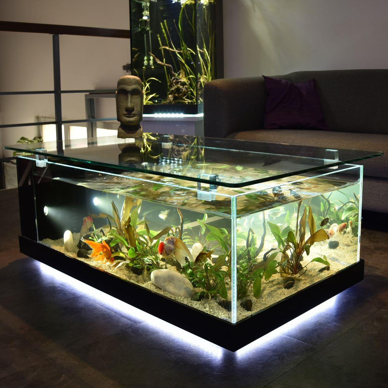 Table basse avec aquarium intégré
